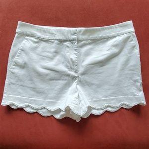 Loft scalloped Riviera shorts size 10